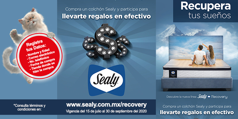 Recovery Sealy 2